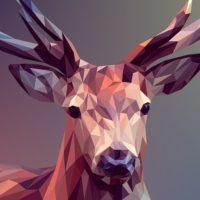 In polygoner Opitk gehaltenes Bild in changierenden Braun- und Grautönen. Im Mittelpunkt steht der Kopf eines Hirsches, der direkt in die Kamera blickt.