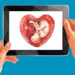 Zwei Hände halten ein Tablet hoch. Auf dem Tablet ist ein Herz in polygoner Optik zu sehen, darin schwimmt ein Fötus wie im Bauch einer schwangeren Frau