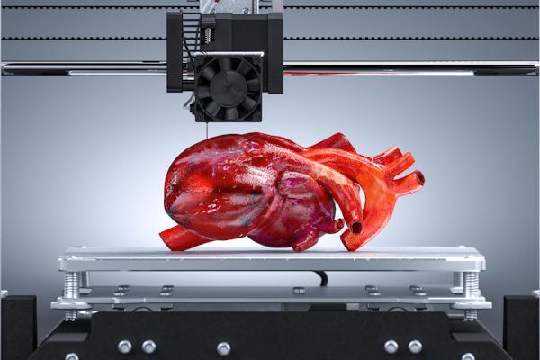 Unter einem 3-D-Druckerkopf liegt ein künstliches Herz mit seinen venösen und arteriellen Anschlüssen.